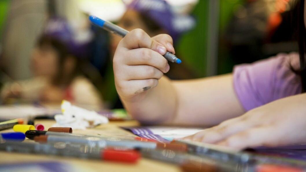 Kunnskapsdepartementet møter motbør fra flere hold når det gjelder forslag til endringer i barnehageloven.