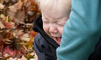 Et fortvilet rop om fred fra et utslitt barn!