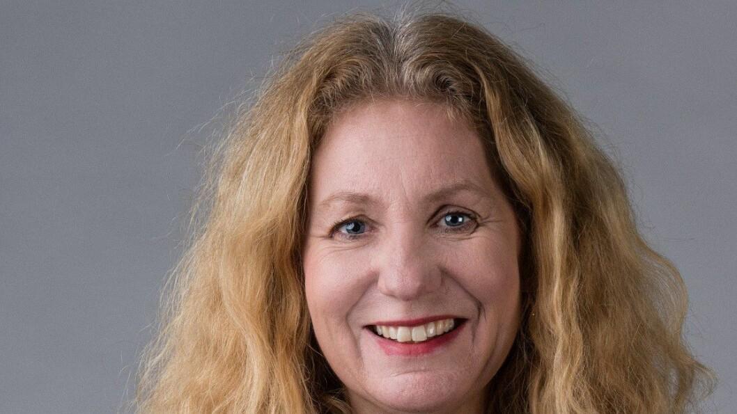 Kari Emilsen er dosent ved DMMH i Trondheim.