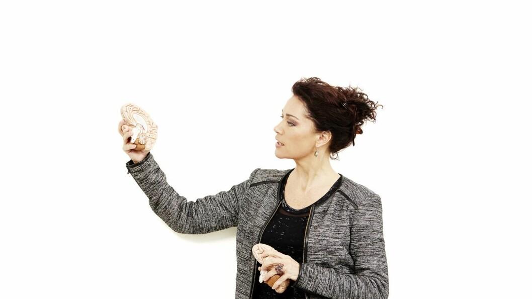 Ann Elisabeth Knudsen er dansk forfatter og hjerneforsker.