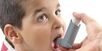 Mormors røyking under svangerskapet øker risikoen for astma