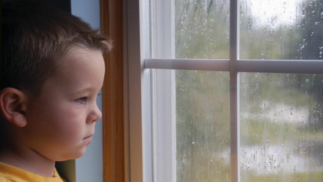 Det er viktig å oppdage de sårbare barna og ha nok fokus på hvordan de faktisk har det i barnehagen og på skolen.