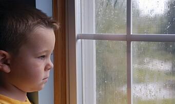Flere barnehager varsler barnevernet
