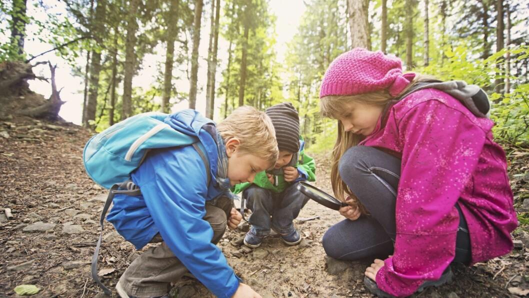 Vennskap i barnehagen er et viktig fokusområde for å forebygge mobbing.