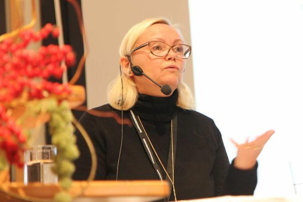 Elin Eriksen Ødegaard er professor i barnehagepedagogikk ved HVL og leder for BARNkunne.