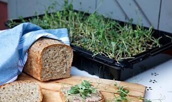 La barna bake brød!
