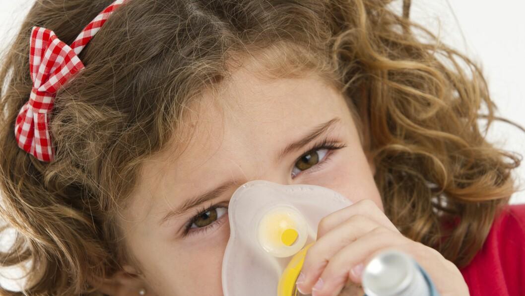 Alle barn har rett til en allergifri hverdag.
