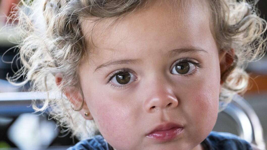 Via det nye, europeiske programmet CAMILLE, skal blant annet barnehageansatte lære å se behovene til barn med foreldre med psykiske problemer.