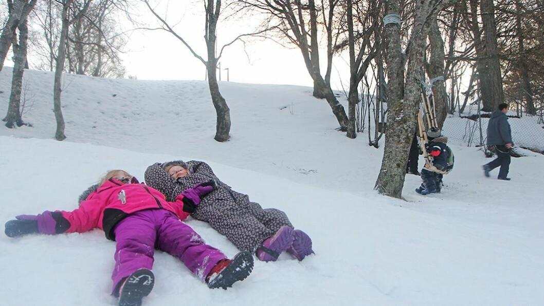 Naturlekeplass: I Rensåsparken i Bodø begynner naturlekeplassen å ta form.
