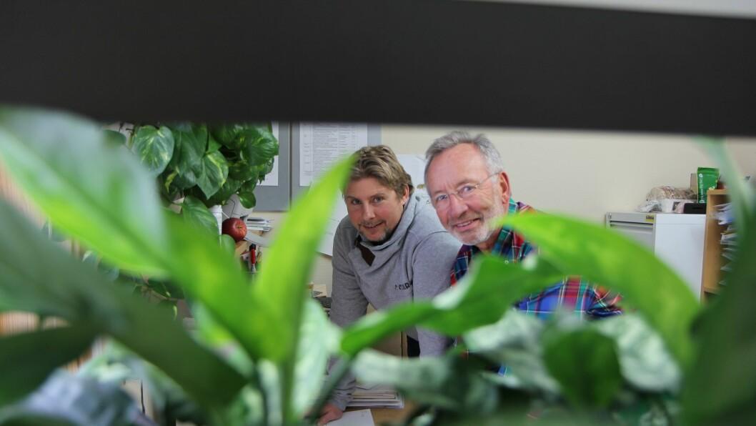 Grønt miljø. Daglig leder i Hundremeterskogen barnehage, Niels Bjørn Olsen, har klart å redusere sykefraværet ved å plante grønne planter og installere dagslys i barnehagen. Her sammen med daglig leder i BioOffice, Jørn Viumdal.