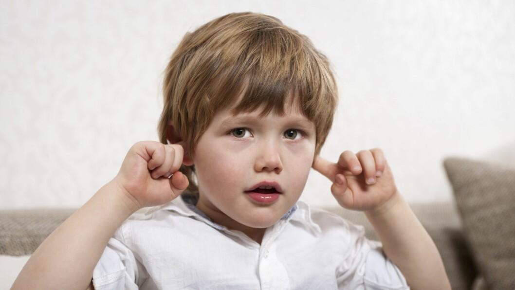 Av de 29 barnehagene som fikk sine lydforhold kartlagt, hadde kun fire tilfredsstillende lydforhold i alle oppholdsrom.