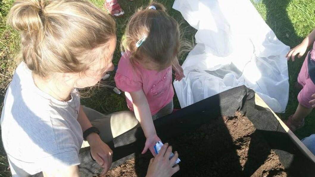 Barna i Bakkedalen FUS barnehage har sådd gulrøtter og salat i den nye plantekassa.