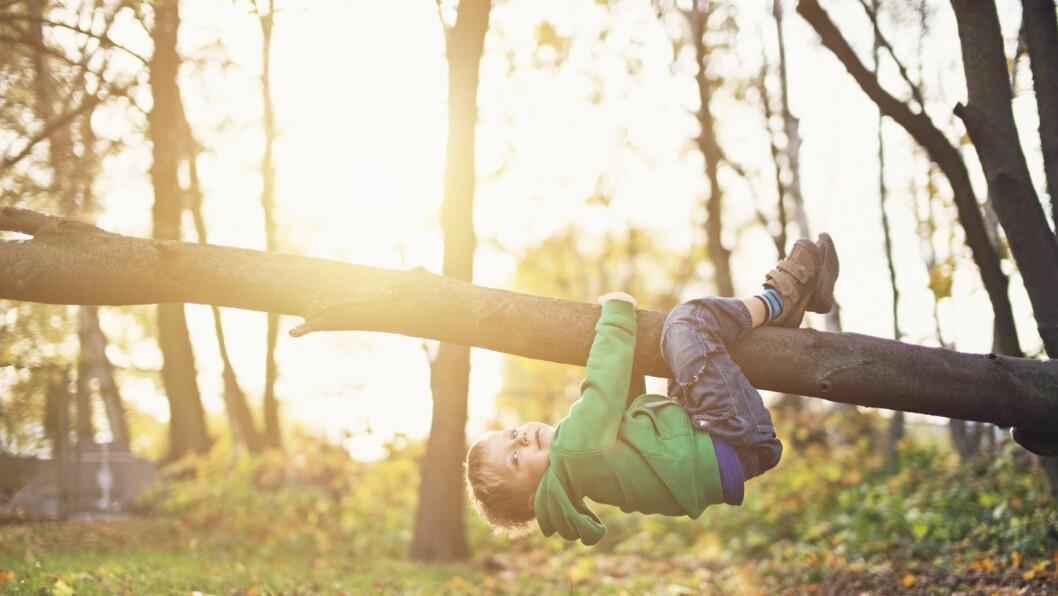 Barnehagen har egenverdi, ikke minst i forbindelse med helseperspektivet.