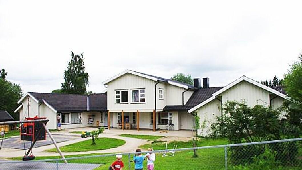 Vormsund barnehage i Nes kommune skårer full pott i foreldreundersøkelsen. Det er første gang det gjennomføres en felles brukerundersøkelse for alle barnehagene i kommunen, både kommunal og private sammen.