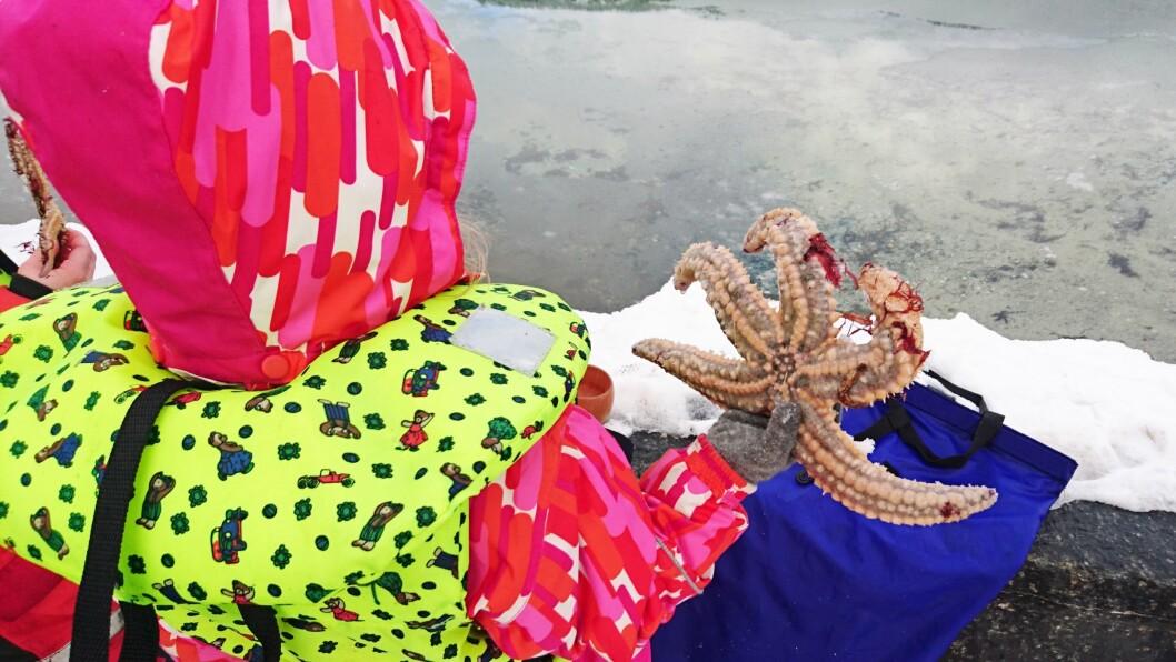 Barna får bli godt kjent med havets skatter.