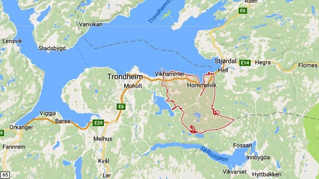 Malvik kommune ligger like ved Trondheim.