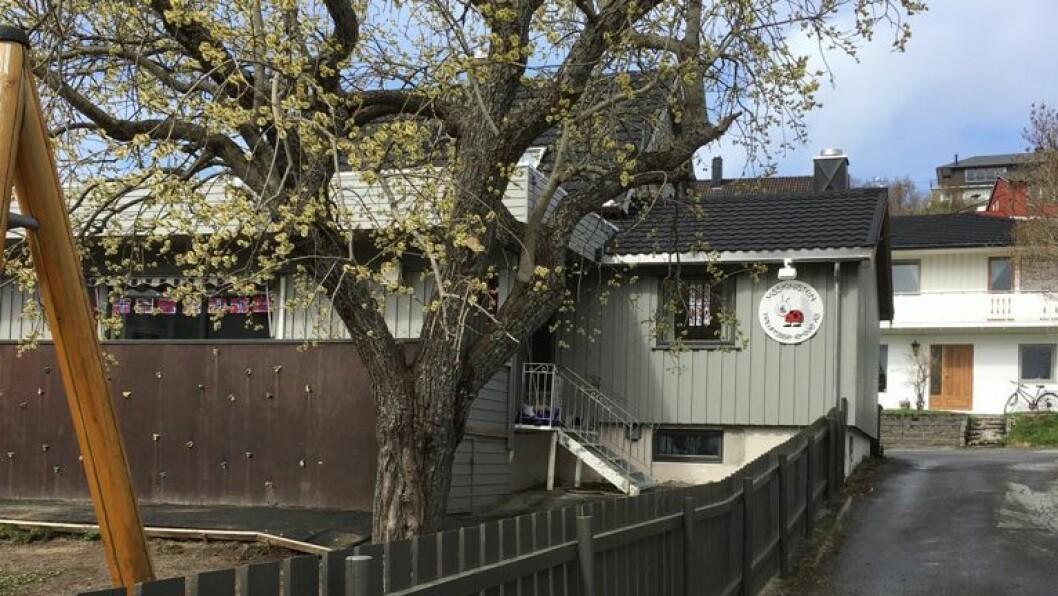 Maskinisten friluftsbarnehage i Bodø har vært drevet som enkeltstående barnehage siden 2004. Nå selger gründerne virksomheten til Læringsverkstedet.