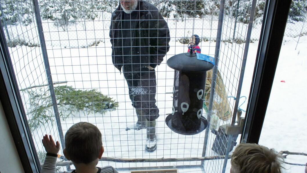 Barna ser ut på fuglekarnappet de har fått utenfor vinduet sitt. Nå er det bare å vente på fuglene.