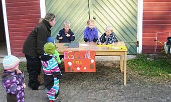 Selger egg for å kjøpe leker til barnehagen