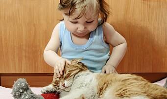 Derfor er det viktig å lære barn at også dyr har følelser