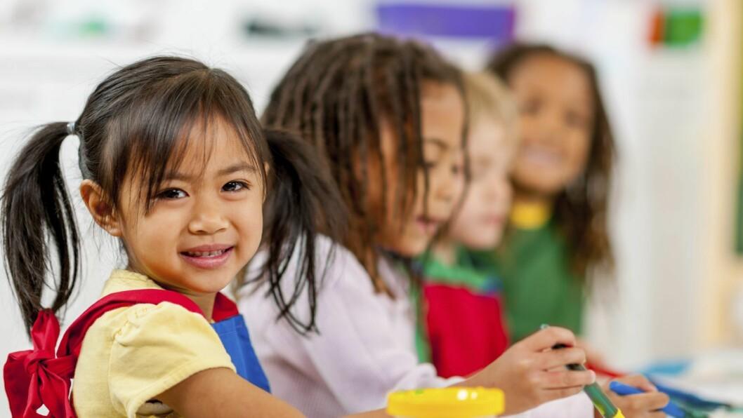- De ansatte i barnehagen bør læres opp i hvordan en aktivt forholder seg til rammeplanens mål om å bekjempe diskriminering og rasisme, og da er fokuset på hudfarge i barnehagen feil sted å starte, mener artikkelforfatteren.