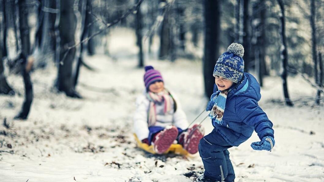 Nyttig verktøy: Rammeplanen gir retningslinjer for barnehagens verdigrunnlag, innhold og oppgave.