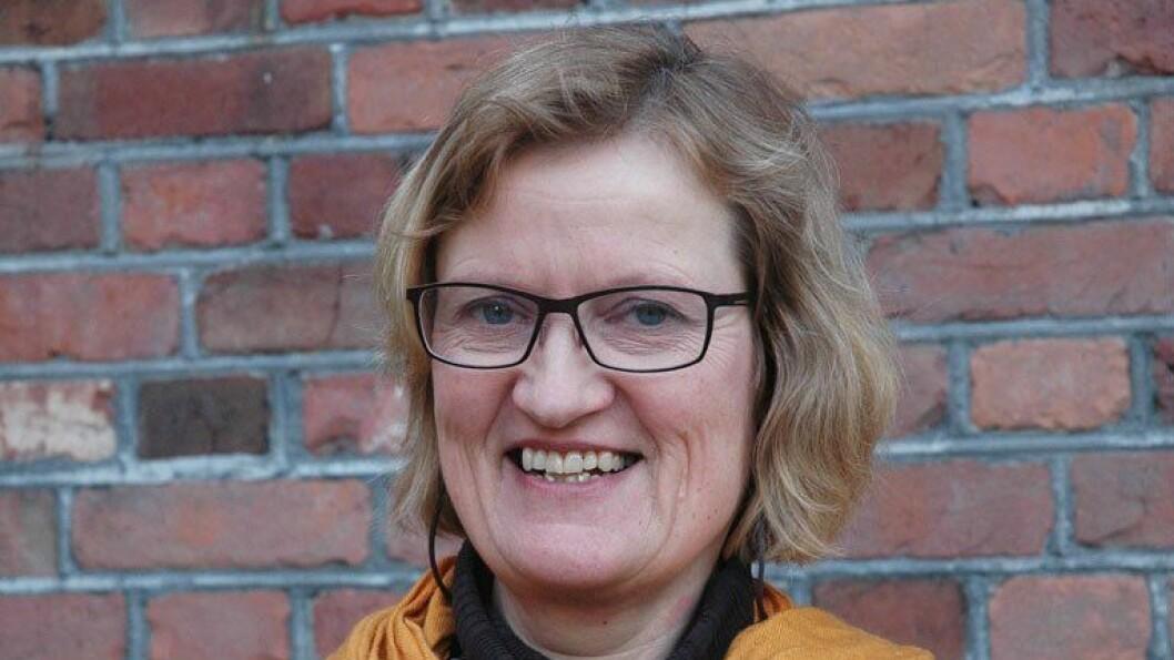 Pedagogikkprofessor ved Høgskolen i Oslo og Akershus vil gjerne kartleggingsverktøyene til livs.