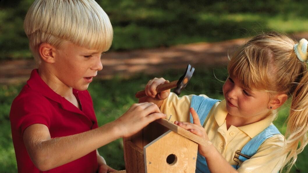 Trearbeid i barnehagen er viktig for utvikling av barns motorikk.