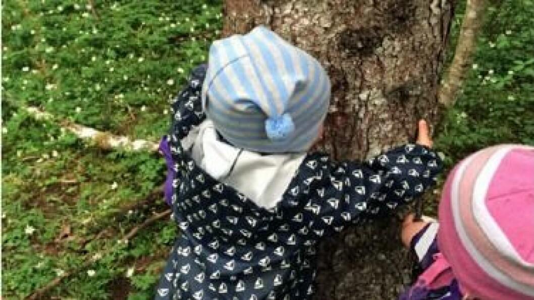 Fysisk kontakt med trærne er noe små barn kan relatere til.