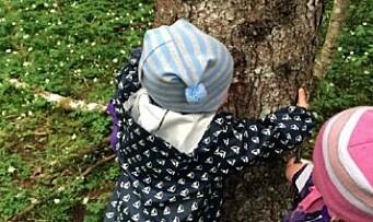 Lær barna empati gjennom trær