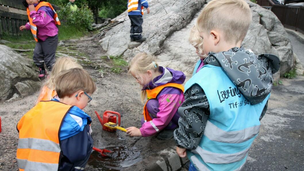 I 2013 satte Kristiansand kommune i gang storsatsingen FLiK i alle kommunens barnehager og skoler. Hovedmålet er et inkluderende læringsmiljø for alle. Læringsverkstedet avdeling Gimlekollen er en av barnehagene som er med i FLiK.