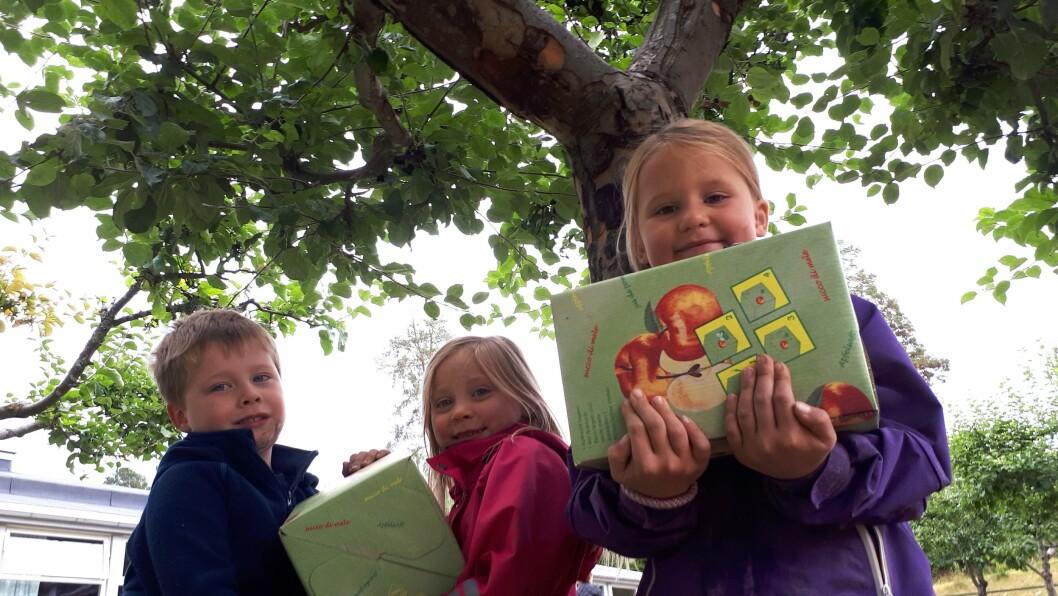 Barna i Norlandia Nilsemarka barnehage følger eplene helt fra blomstring og til ferdig juice. Eplehagen med 20 trær gir nesten ubegrensede muligheter til pedagogisk arbeid for barnehagen i Asker.