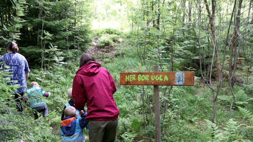 Barna har selv vært med på å lage skiltet som skal vise ugla veien til uglekassa.