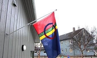 Vil styrke retten til samisk barnehagetilbud