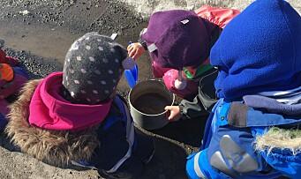 Barnehage - mer enn en læringsarena