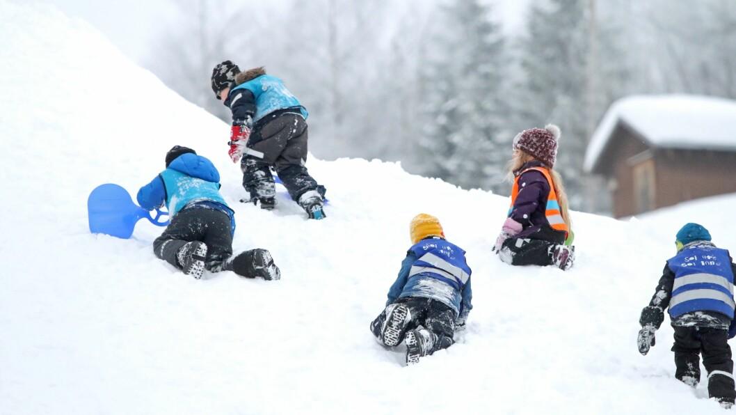 Vinteraktivitetsdag i Kniplia skianlegg.