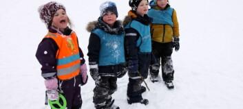 Samlet 11 barnehager i akebakken: – Vi kaller det vinterens vakreste eventyr