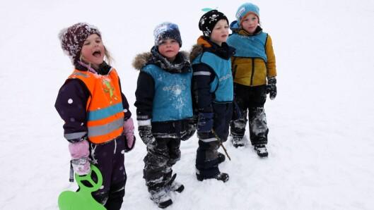 Barna fra Espira Brådalsfjellet barnehage er glade i å ake.