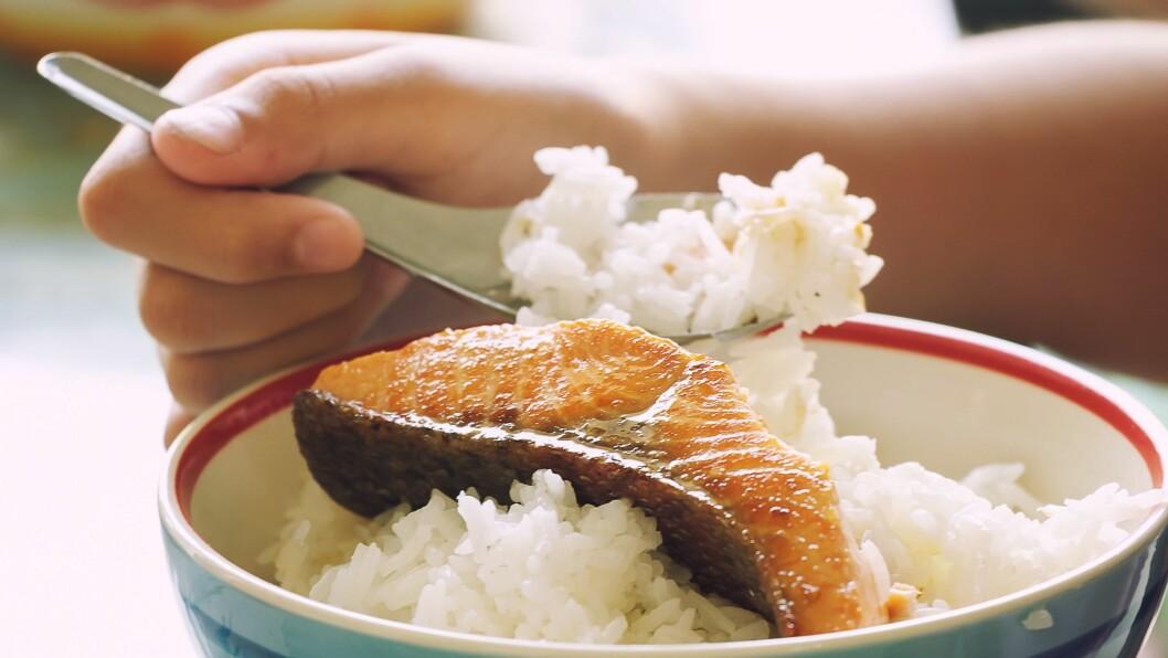 En ny studie viser sammenheng mellom å spise feit fisk og hvor fort barna jobbet kognitivt. Illustrasjonsfoto: Gettyimages