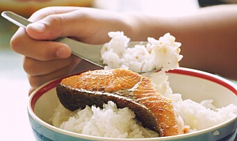 Ny studie: Barn som spiser feit fisk har bedre kognitive evner