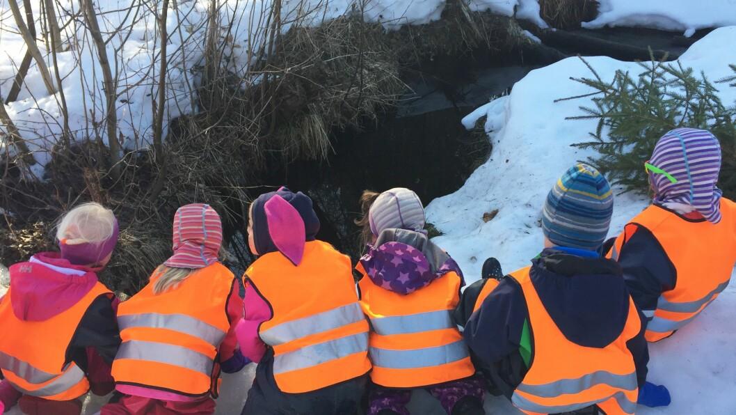 Barna oppdager hulen til selveste Lurvelegg.