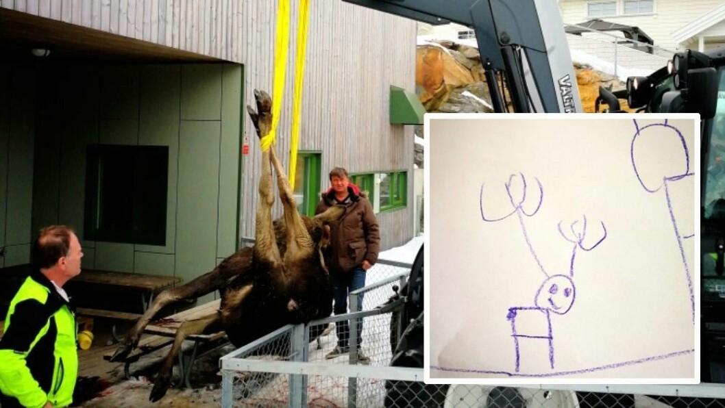 Tirsdag i forrige uke falt elgen ned rett foran hovedinngangen til småbarnsavdelingen i Augerød barnehage. Siden har det handlet mest om elg i barnehagen. Foto: Nina Gullberg, Augerød barnehage