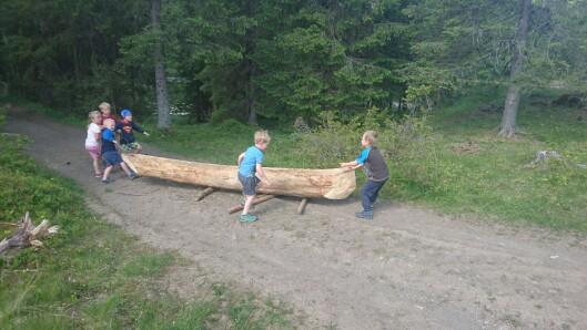 Barna trekker kanoen ned til tjernet.