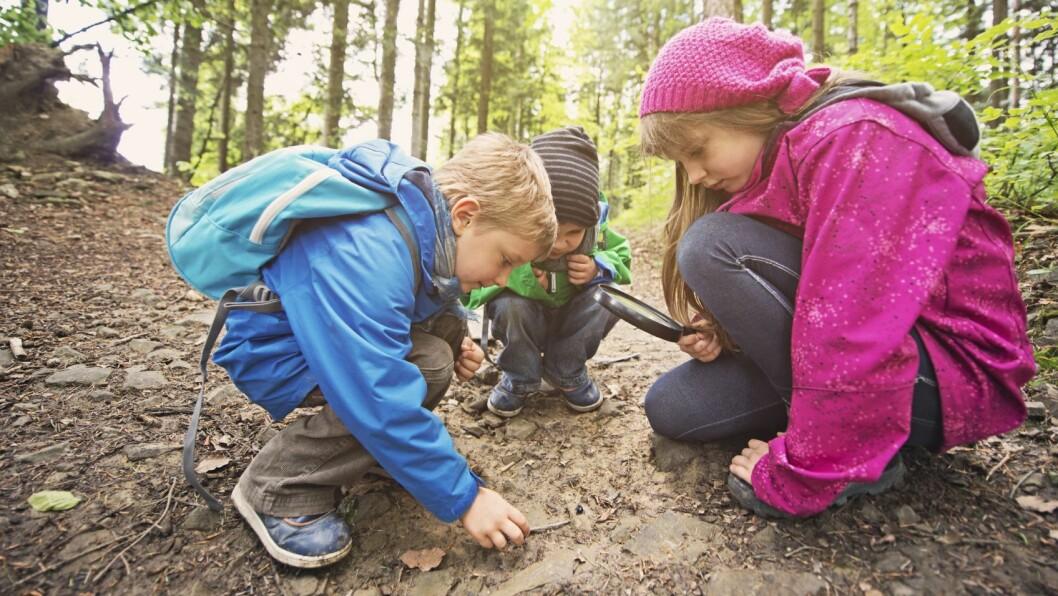 «Jeg har troa på at barna fint kan styre temaene i hverdagen sin selv,» skriver Marianne Haugeby.
