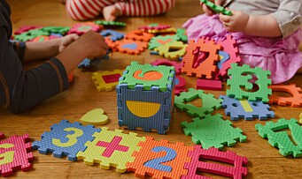 Konferanse om matematikk i barnehagen: Hvor går grensen?