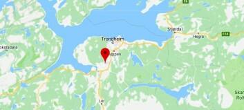 Barnehage i Trondheim risikerer å måtte stenge - kommunen fører tilsyn etter flere bekymringsmeldinger