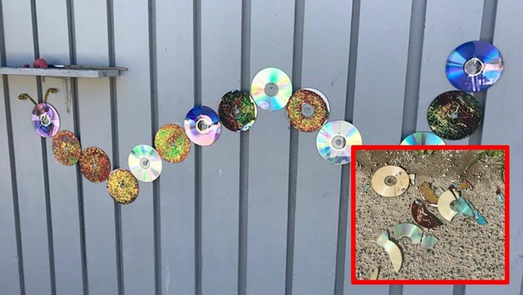 Den gamle cd-platene var malt etter alle kunstens regler og hengt opp på veggen som en flott larve. Men fikk ikke henge lenge i fred før vandaler rev dem ned og ødela alt. Foto: privat