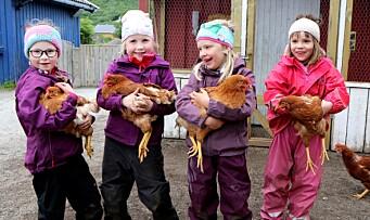 – Vi skal være snille med hønene, og snille med hverandre