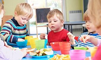 Tester ut inntektsgradering av kostpenger: – Målet er at alle barnehagene skal ha et godt mattilbud