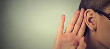 Syv av ti kvinnelige barnehageansatte sier de lider av hørselsplager